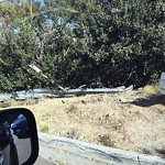 Damaged Guardrail at 2513–2533 Admiral Baker Rd