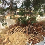 Illegal Dumping - Open Space/Canyon/Park at 3368 Imperial Ave