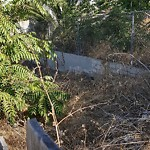 Illegal Dumping - Open Space/Canyon/Park at 3945 T St