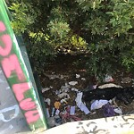 Illegal Dumping - Open Space/Canyon/Park at 3519 Silktree Ter