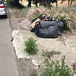 Illegal Dumping - Open Space/Canyon/Park at 4012–4134 Nimitz Blvd