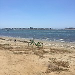 Illegal Dumping - Open Space/Canyon/Park at 1511–1559 Fiesta Island Rd