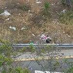 Illegal Dumping - Open Space/Canyon/Park at Moore Street & El Camino Real