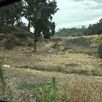Illegal Dumping - Open Space/Canyon/Park at I 5 N
