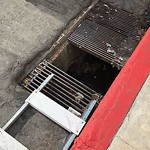 Storm Drain at 3801–3849 10th Ave