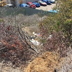 Illegal Dumping - Open Space/Canyon/Park at 1304 38th St