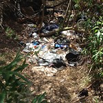 Illegal Dumping - Open Space/Canyon/Park at 2714 Adrian St