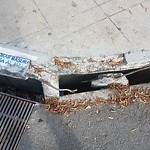 Curb at 2551 Commercial St