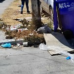 Illegal Dumping at 4142 42nd St