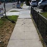 Sidewalk at 3792 Monroe Ave
