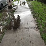 Sidewalk at 4078 30th St