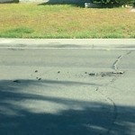 Pothole at 6503 Salizar St